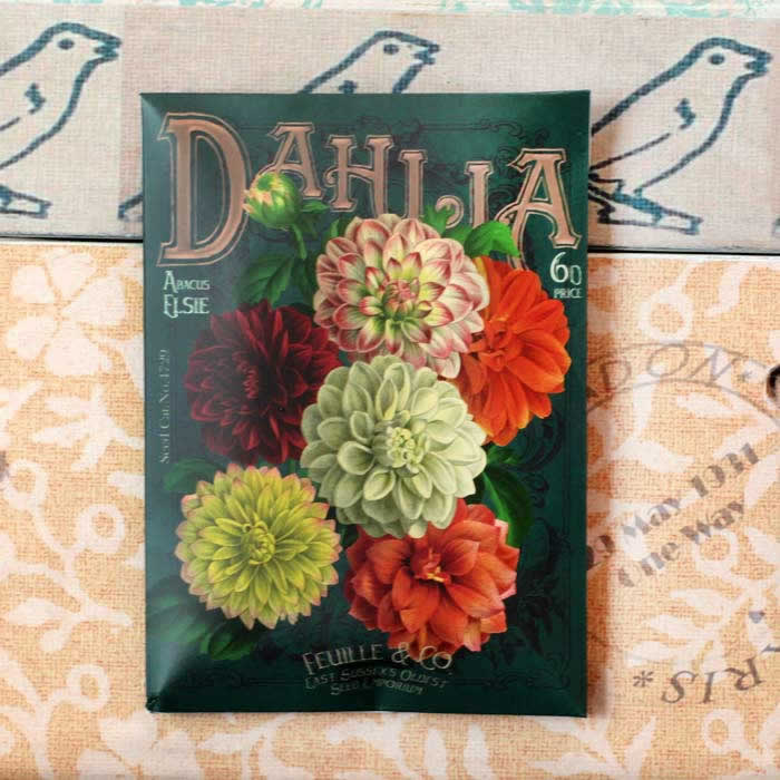 Seed packet design protective pouch for Compact Mirror 'In Bloom' Dahlias by Disaster Designs