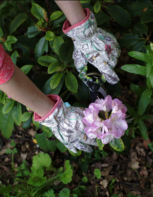 Wild & Wolf Gardening Gloves, Gardening Accessories by Source Lifestyle