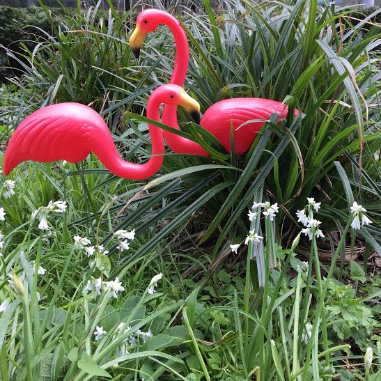 Temerity Jones flamingo garden ornaments buy online UK
