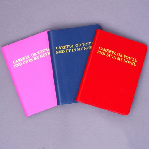 Colourful Leather Notebooks - Careful or You'll End Up in My Novel £12.50