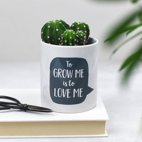 Small Ceramic Pot by Bespoke Verse - To grow me is to love me