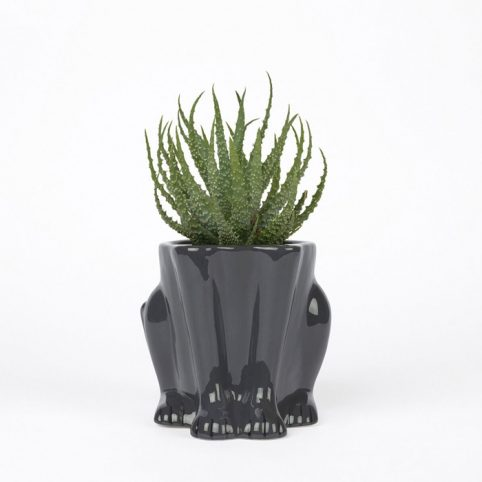 Black Panther Feet planter - Buy online UK