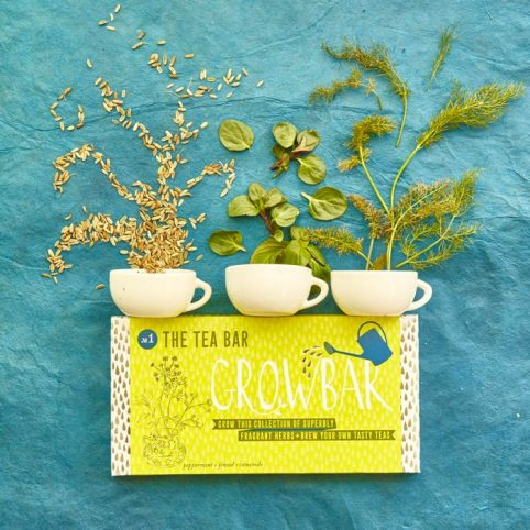 Tea Grow Bar - Buy Online UK
