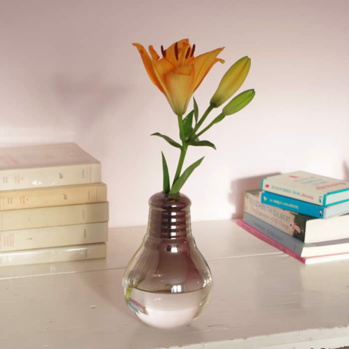 Light Bulb Vase Sourcelifestyle
