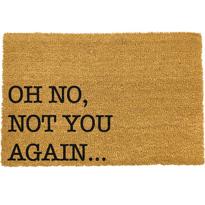 Not You Again Doormat from Artsy - Free p&p