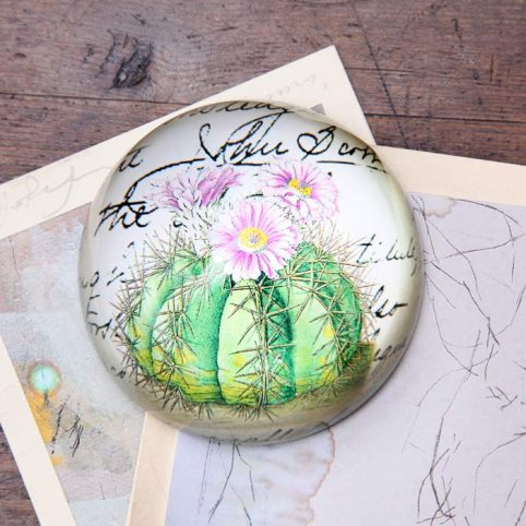 Gift ideas costing 10 20 great london gift shop buy online cactus dome paperweight negle Choice Image