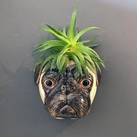 Ceramic Pug Wall Vase - Free UK Delivery