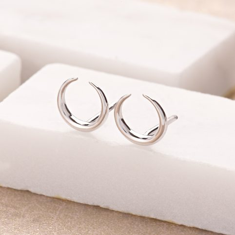Silver Horn Stud Earrings Scream Pretty