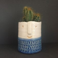 Blue and White Cactus Face Plant Pot