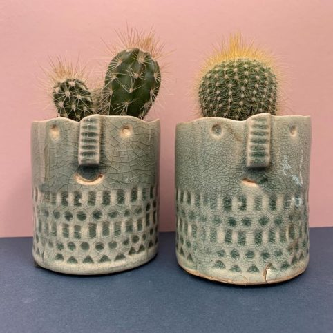 Sage Green Mini Cactus Pot - Buy Online UK