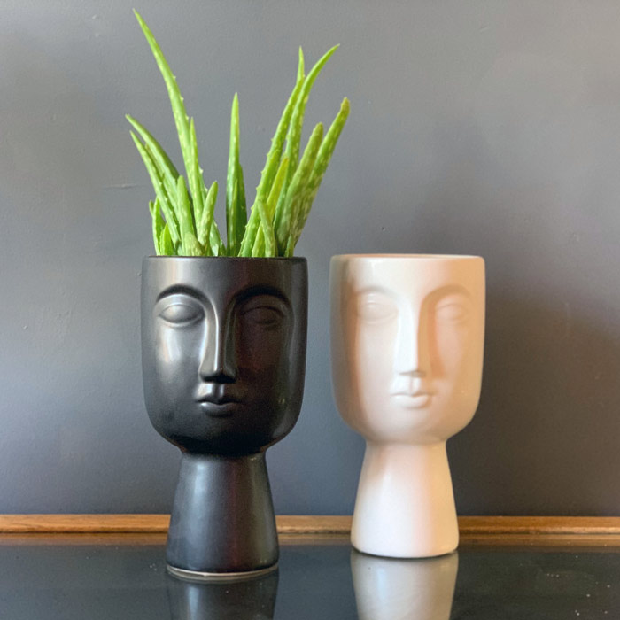 Face Planters - Buy Online UK