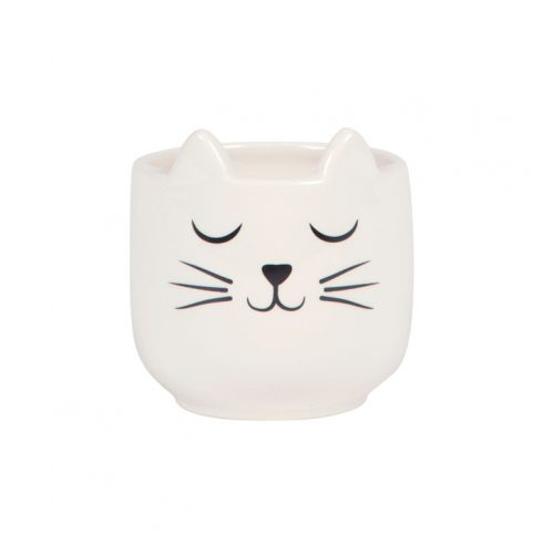 Mini Cat Whiskers Planter - Buy Online UK