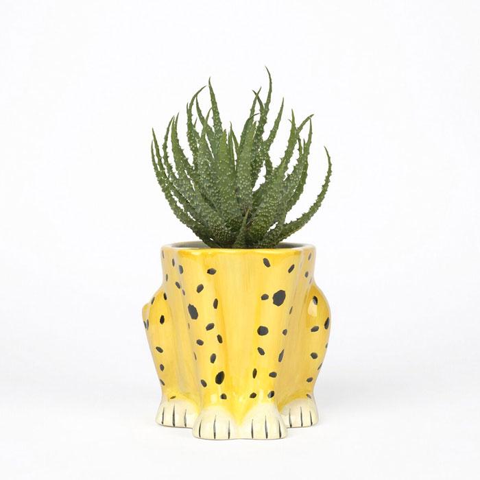 Leopard Feet Flower Pot - Buy Online UK