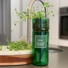 Thyme hydro herb kit - this eco friendly herb kit curated from source lifestyle with free UK delivery