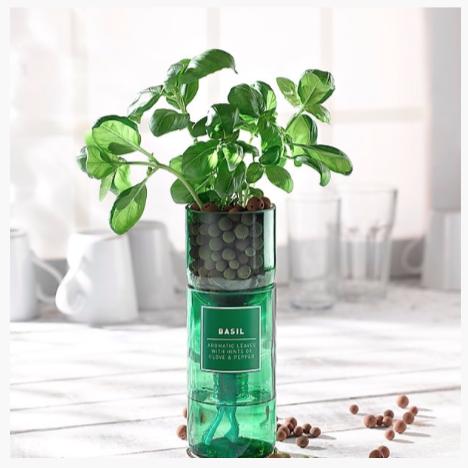 indoor herb garden iseas