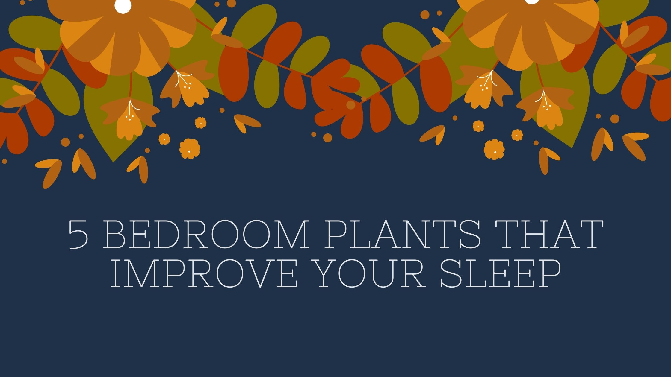 5 Bedroom plants that improve your sleep