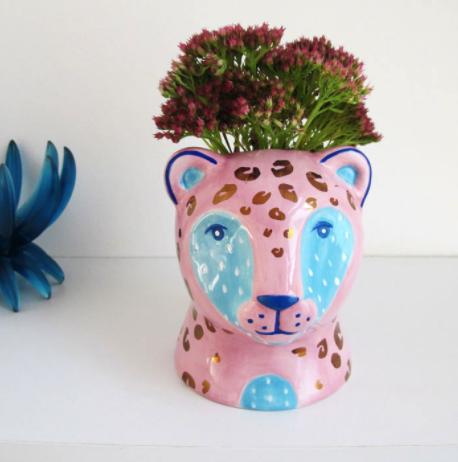 pink leopard planer bedroom plants