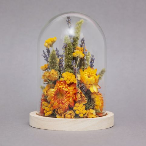 Dried Flowers in Glass Dome - Buy Online UK