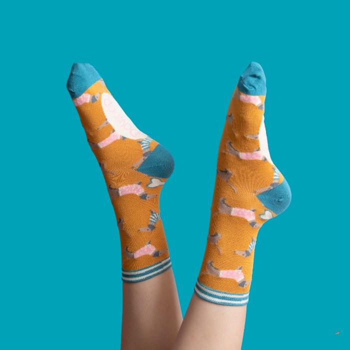 Powder Sausage Dog Socks