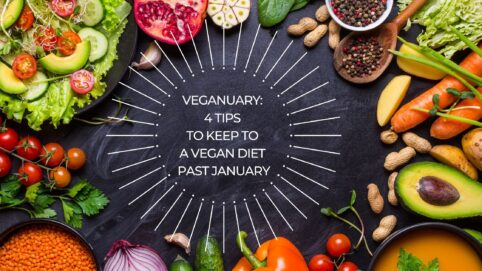 In 2021, 500,000 people pledged to follow a vegan diet or, in other words, to support Veganuary worldwide.