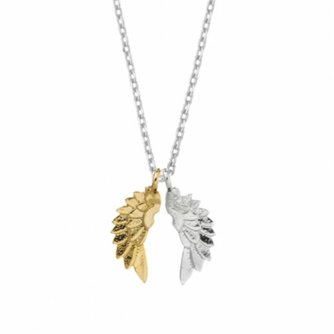 Angel Wings Necklace Estella Bartlett - Buy Online UK