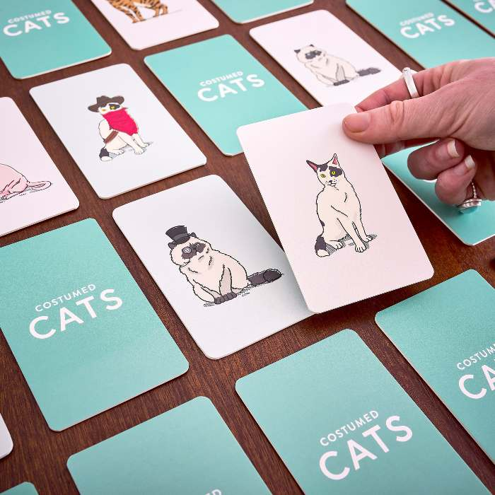 Costumed Cats Memory Game - Buy Online UK