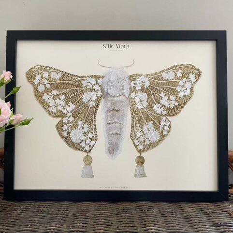 Silk Moth Framed Wall Art - Buy Online UK
