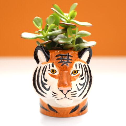 Tiger Pen Pot Quail Ceramics - Free UK Delivery When You Buy Online