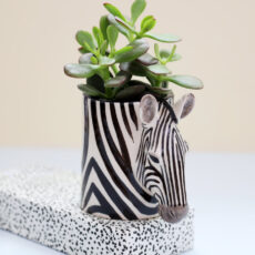 Quail Ceramics Pen Pot Zebra - Free Uk Delivery When You Buy Online UK